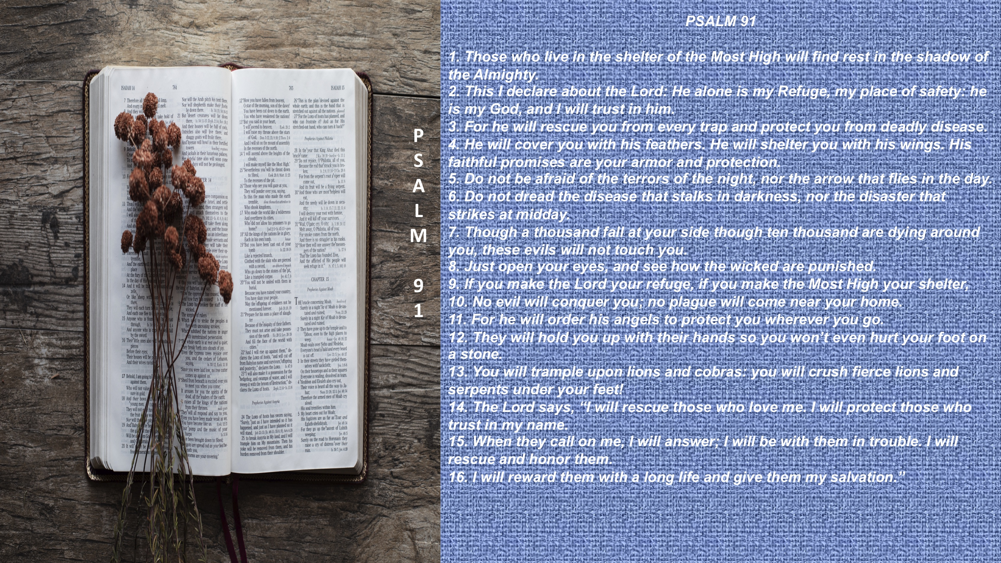 Psalm 91 – FINAL